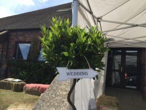 wedding-entrance